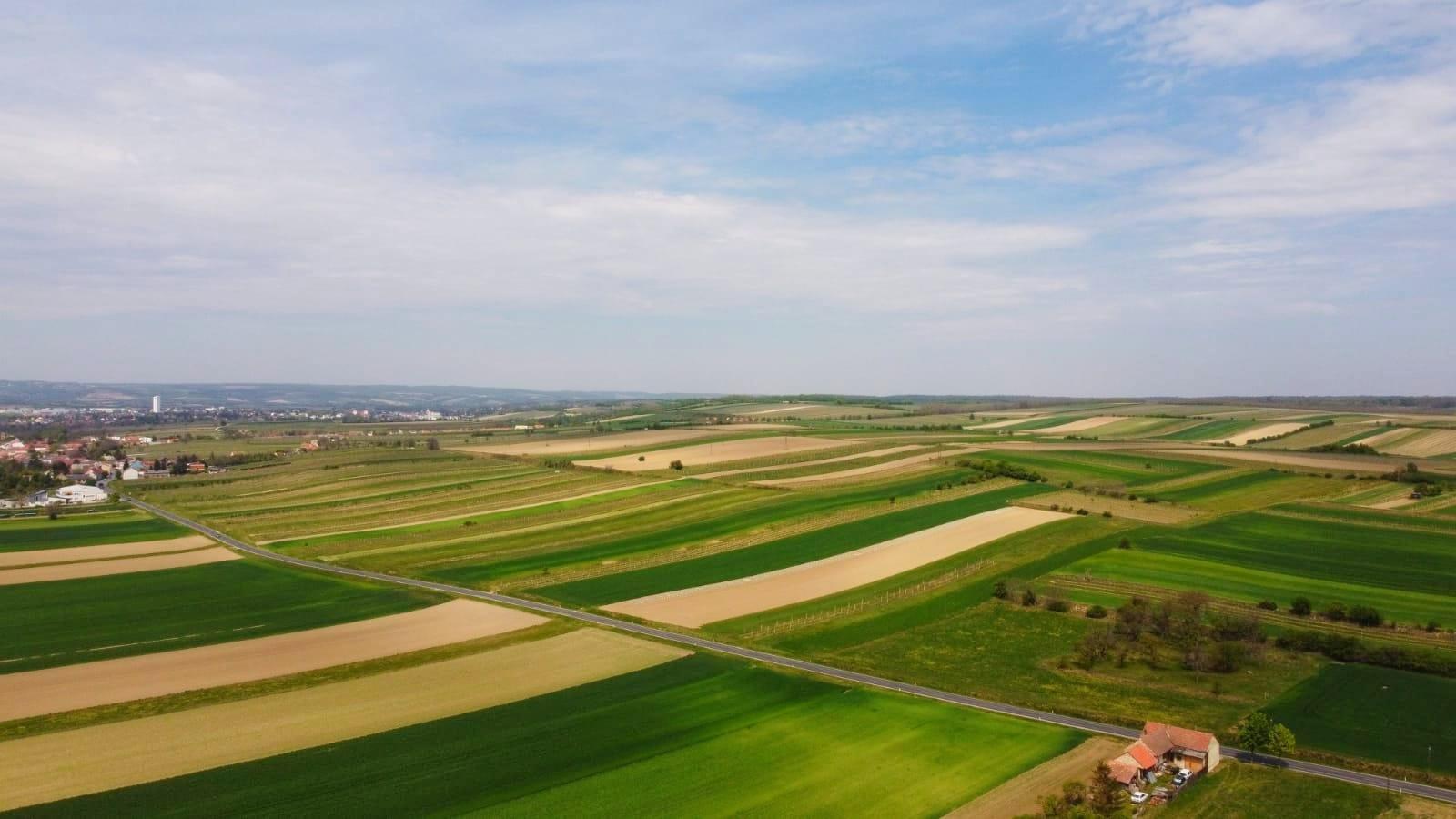 Pinnisch Benedikt Landwirtschaft