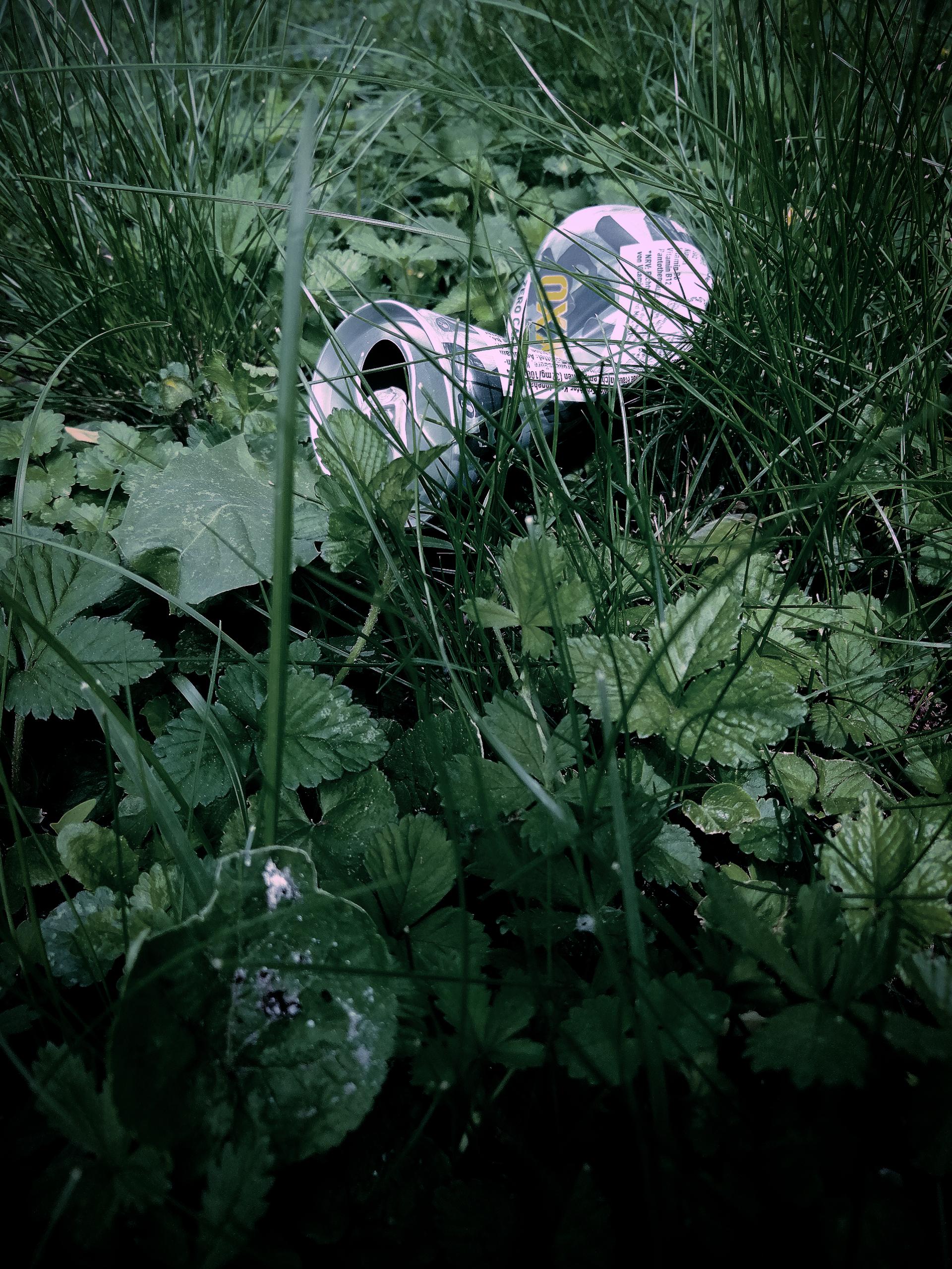 Schwab Victoria Benutzte Natur